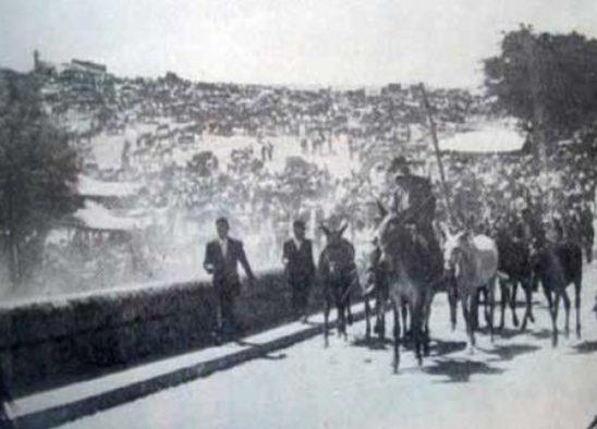 En Latidos de Sonique «Badajoz ciudad Flamenca»